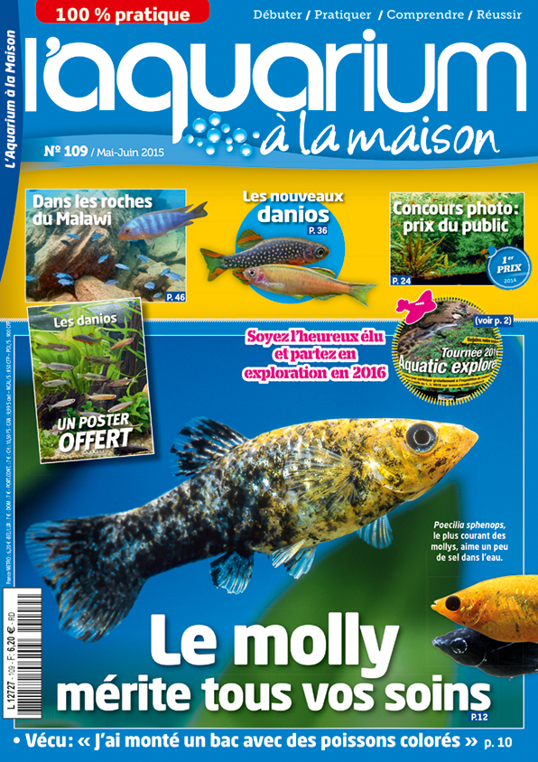 ACARA News Aquarium-a-la-maison-109